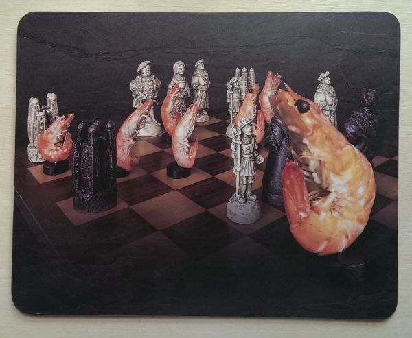 Foodshoots Prawn Chess - Unique Design Tablemat